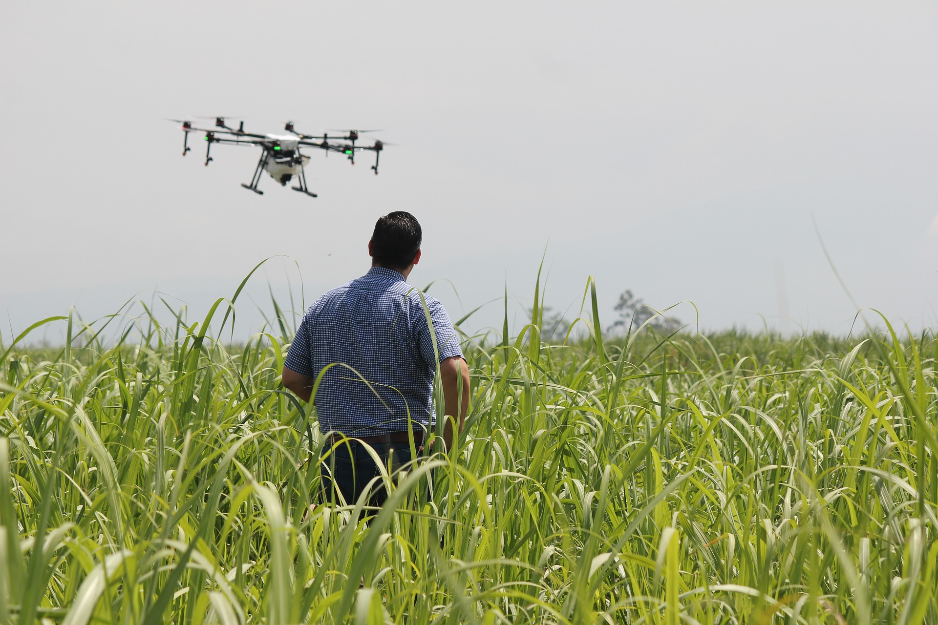 drone field - Agriculture and Farming with a Drone